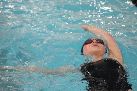 5 weird facts about competitive swimming