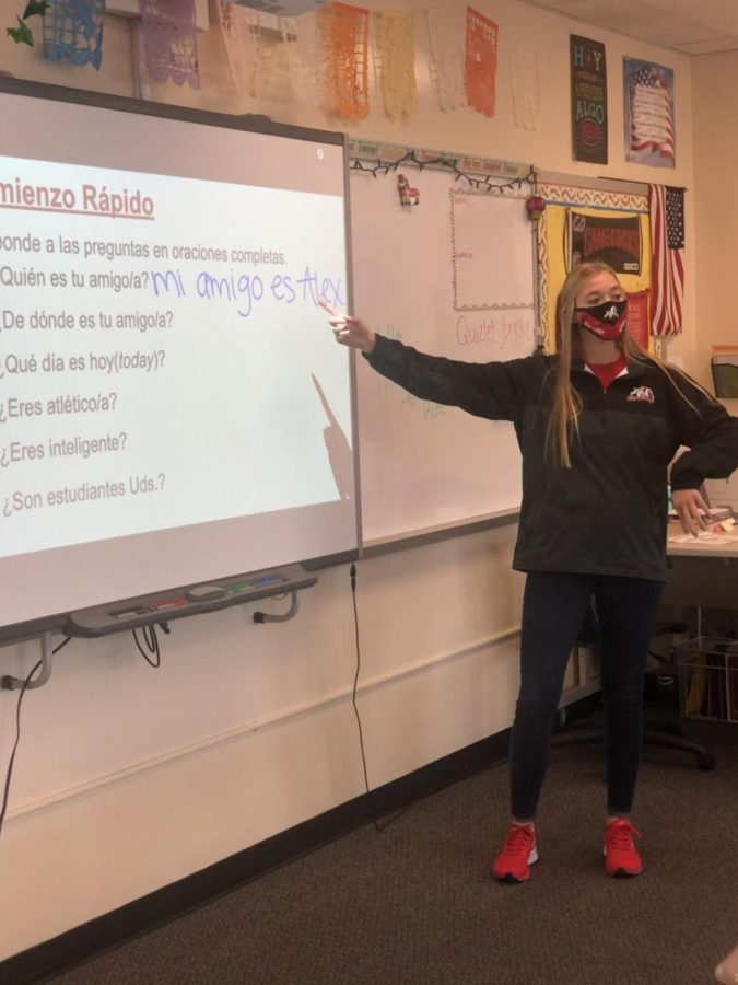 Not just a teacher
